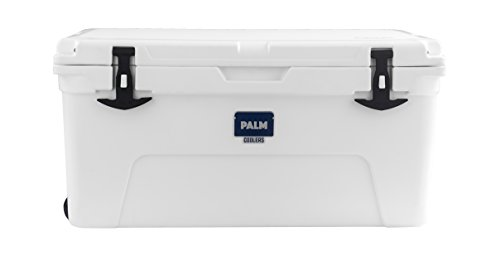 Palm Coolers PX 65 (White)