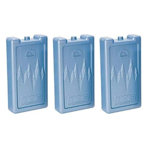 Igloo Ice Block Large (Set of 3)