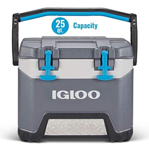Igloo BMX 25 Quart Cooler with Cool Riser Technology, Fish Ruler,...