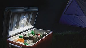best camping cooler bear proof