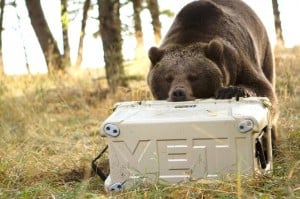 YETI Cups/Coolers : Pa...