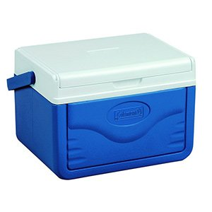 Best Personal Lunch Cooler – Find The Perfect One Here