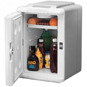 Best Thermoelectric Cooler - Coleman