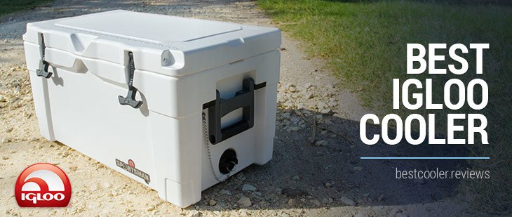 Best Igloo Cooler For Sale