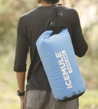 best portable cooler bag