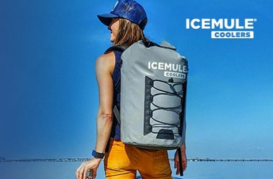 Choose The Best Soft Cooler For Your Needs Right Here