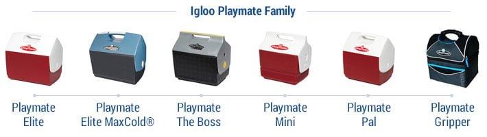 igloo playmate family