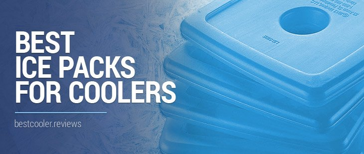 Top 5 Best Ice Packs For Coolers And How To Maximize Ice