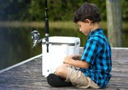 best live bait cooler
