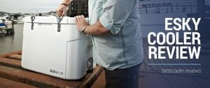 esky cooler review