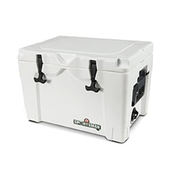 igloo sportsman cooler 40qt