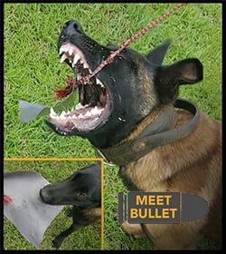 polar bear liner Bullet