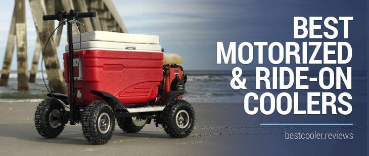 best motorized cooler scooter