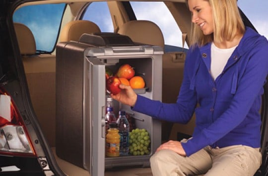 powerchill coleman thermoelectric cooler review