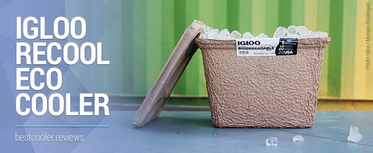 igloo recool biodegradable eco cooler