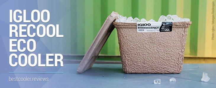 igloo recool biodegradable eco cooler