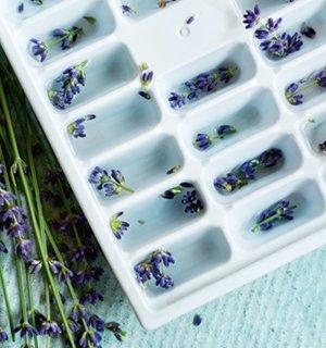 best ice tray