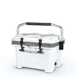 igloo IMX 24 QT COOLER