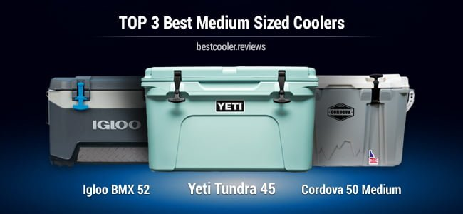 medium sized coolers